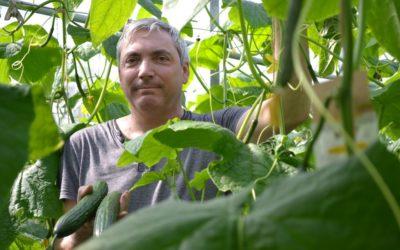 Gemüse; von Reichenauer Gärtnern